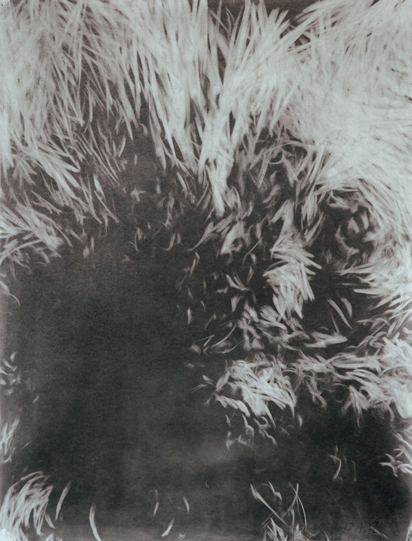 2012_1_17-Graphit-a.-Papier-65x50cm