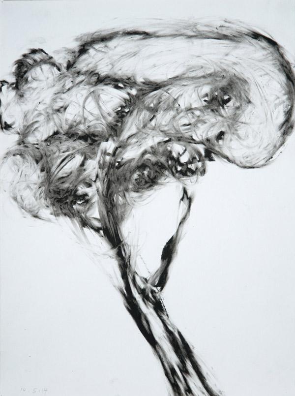 14_5_14-Lithokreide-auf-Papier-28x21cm